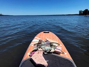 De l'Atlantique aux Grands Lacs, pour préserver la beauté du fleuve