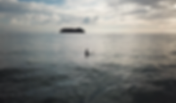 Screen Shot 2019-05-22 at 2.40.02 PM.png