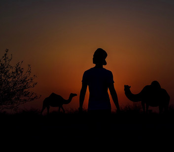 That Dream of the Ultimate Adventure; From Mongolia to London on a Camel