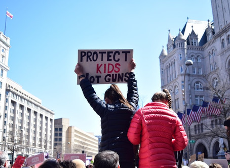 Focus on Real Solutions to Gun Violence