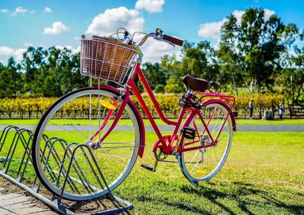 Antifurto bici ArgoPro