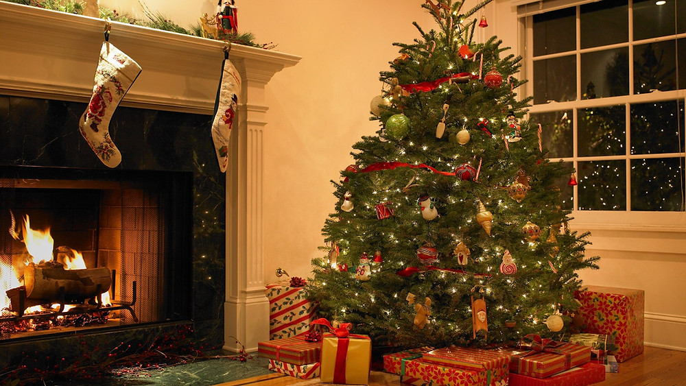 Albero Natale  ArgoPro Delivery