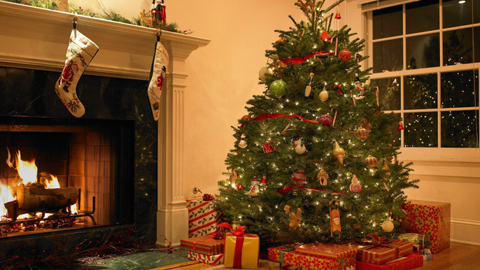 A Natale, l'albero arriva con la Piattaforma digitale ArgoPro Delivery