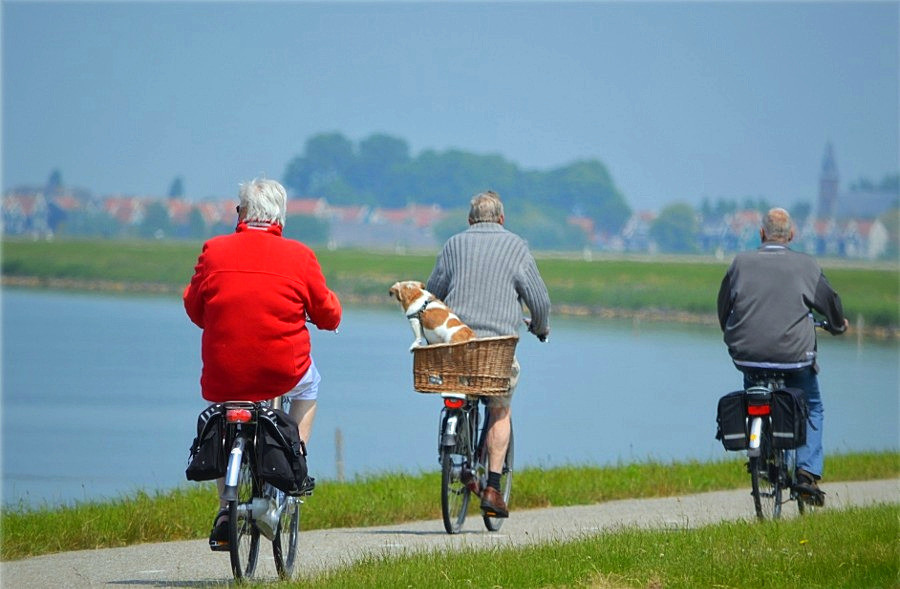Alzheimer, anziani in bicicletta