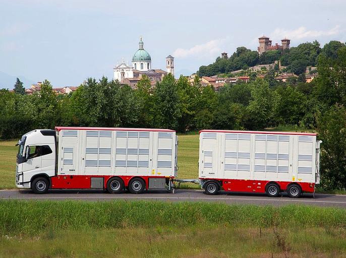 Pezzaioli si affida ad ArgoPro per migliorare il comfort del trasporto animali