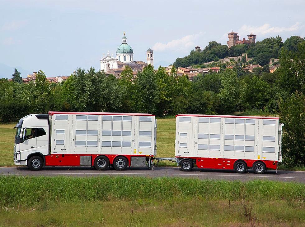 Pezzaioli e ArgoPro per il comfort del trasporto animali