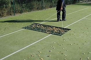 Leaf Rakes.jpg