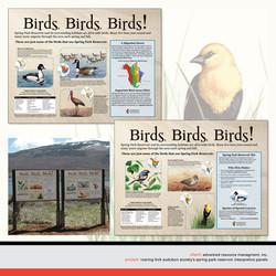 BND_Birds_new