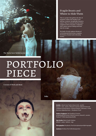 Layout Example 03