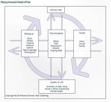 Biopsychosocial Model of Pain.PNG