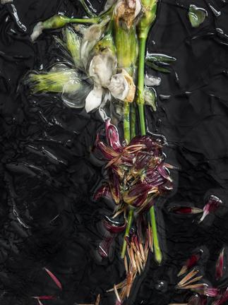 Flower #3.jpg