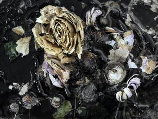 Flower #13.jpg