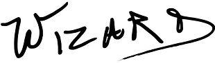 Wizard-Logo-768x228.jpg