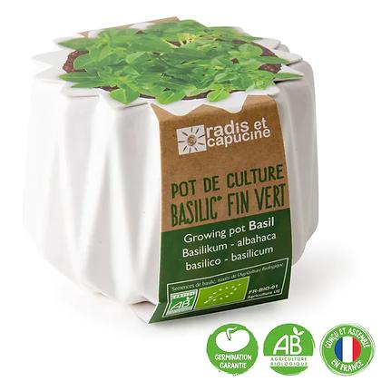 Pot Origami - Basilic Fin Vert BIO