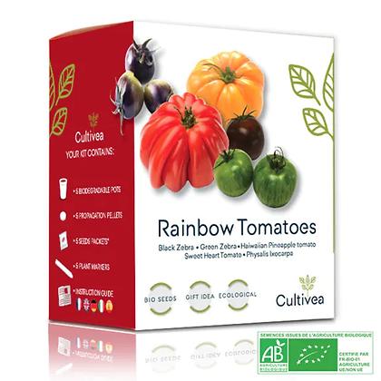 Mini Kit Prêt À Pousser Tomates Colorées Bio*