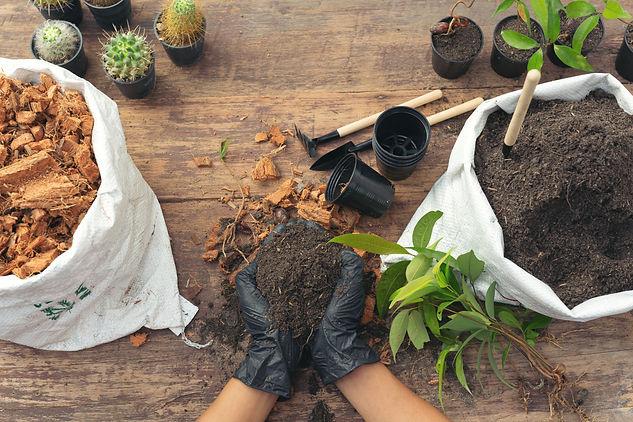 closeup-picture-of-gardener-s-hands-plan