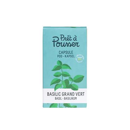 Capsule Basilic Grand Vert BIO pour Jardinière LED