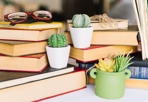 book-pile-with-cactus.jpg