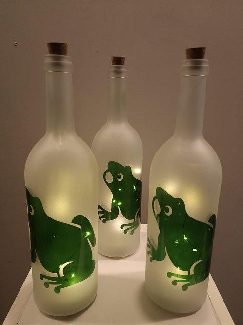 Bottiglie luminose
