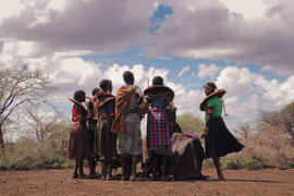 FGM 331.jpg