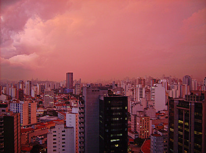 Sampa Pink.jpg