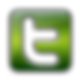 twitter-logo-png-green-5.png
