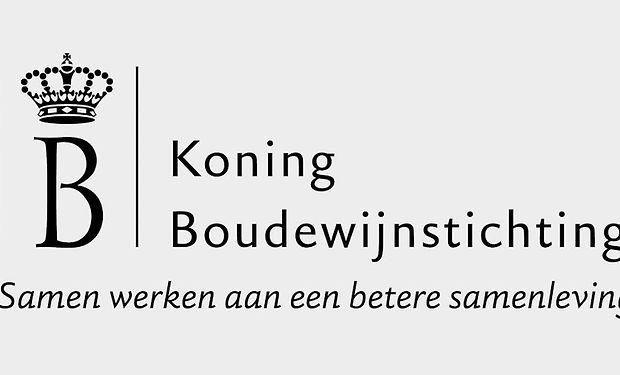 koningboudewijnstichting_edited.jpg