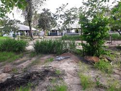 Nyamina Garden (39)