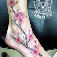 Demon Dave Cherry blossom foot.jpg