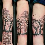 Christopher trees.jpg