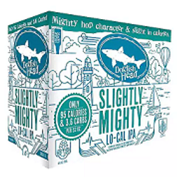 Dogfish Head Slightly Mighty 6 Pack 12 oz Cans