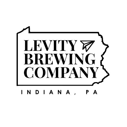 Levity Its Hoplicated 4 Pack 16 oz Cans