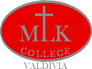Bienvenido al nuevo sitio mlk.cl!