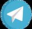 Icone Telegran.png
