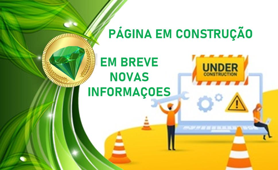 Pagina em construção.png