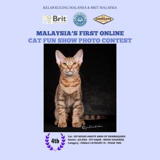 CAT FUN SHOW PHOTO CONTEST (GIP WIDAD AWATIF AMNI OF DRIMBAQASEH)