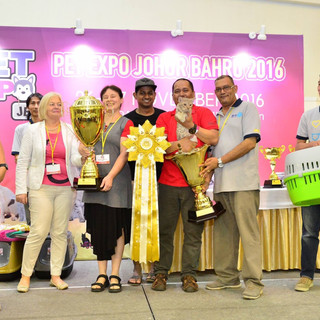 Winner Best Of The Best (GC BWI DW (CFA) ICH (FIFE) Zuyyin Sadalsuud Of Widad)
