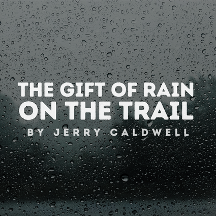 The Gift Of Rain On The Trail