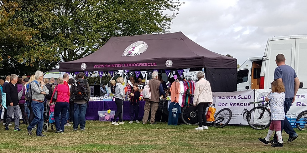 Paws in the Park - Ardingly, West-Sussex