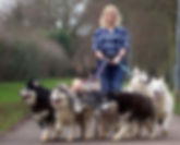 Heather walking dogs