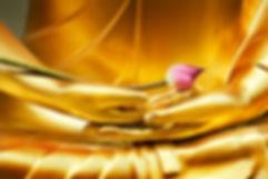 imagen-lotus-mano-buda_42764-27.jpg