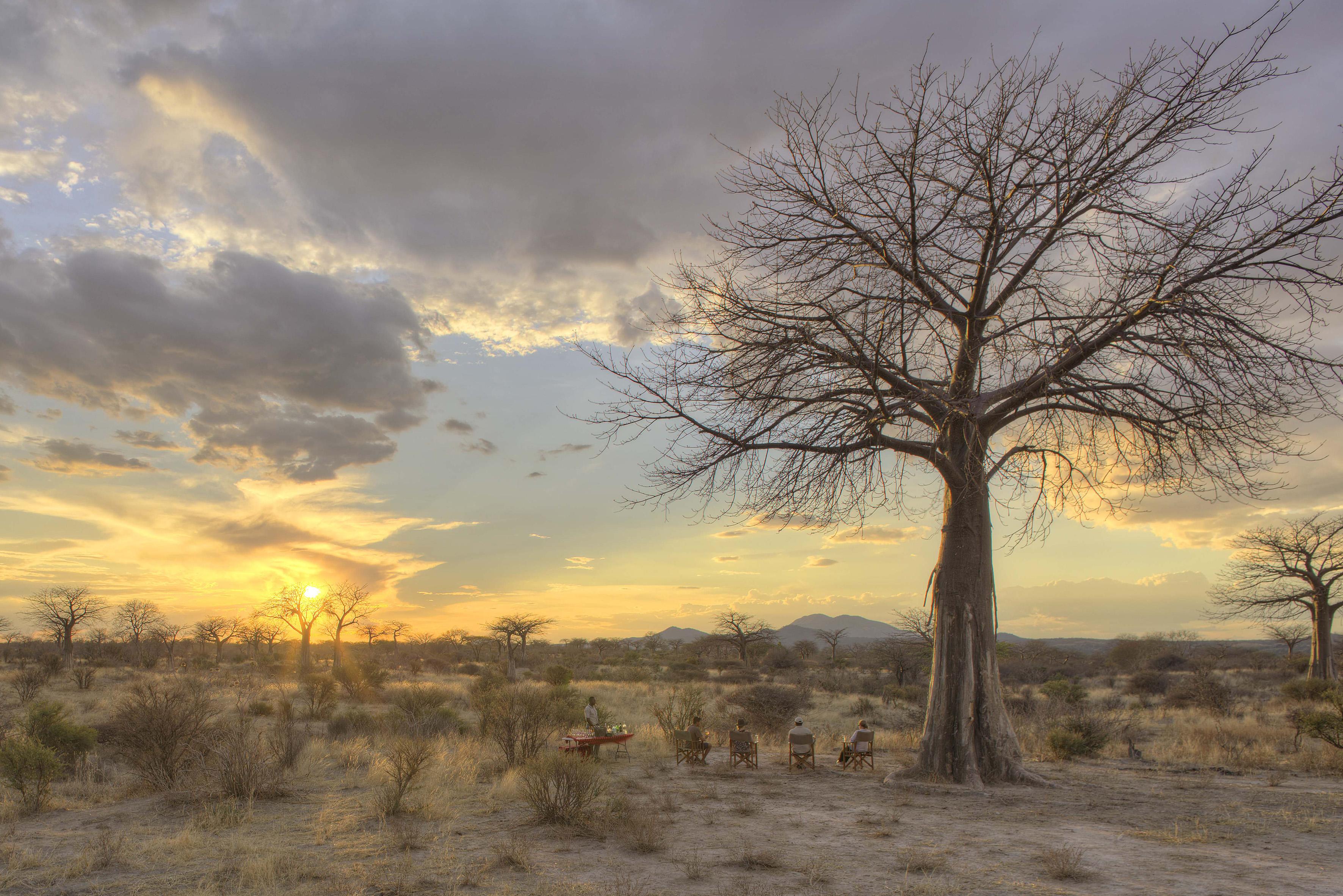 jabali_ridge_-_drinks_at_sunset_in_baoba