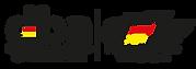 dfv logo.png