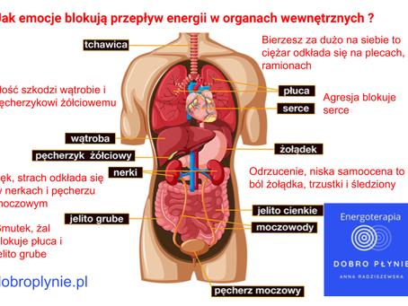 System energetyczny a organy wewnętrzne.