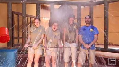 Zoo Atlanta Video
