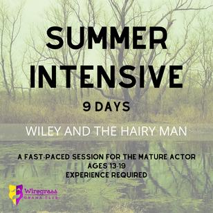 Summer intensive social wiley.png