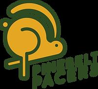 pinebelt-pacers-logo-main.png