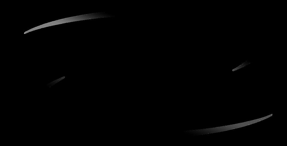 logo-allergy-force