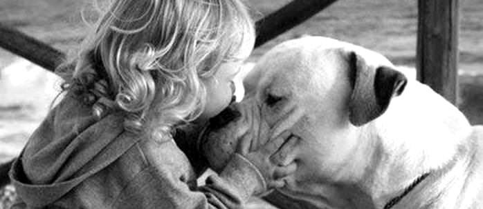 small-blond-child-kissing-white-bulldog-on-nose