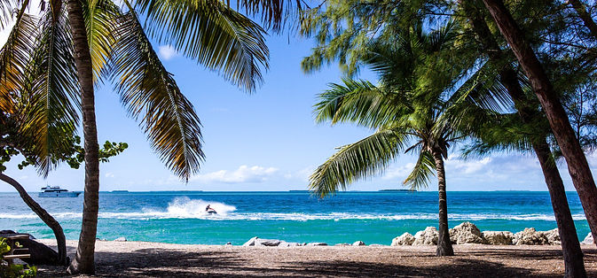 view-of-jet-skier-from-beach-with-palm-trees